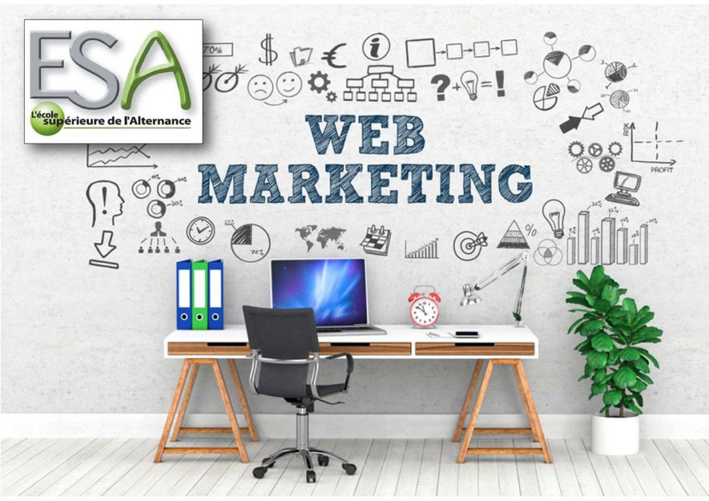 pub études web marketing esa